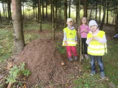 Výprava za mravenci